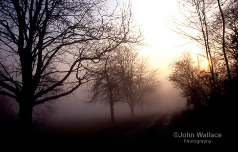 Misty morning in England