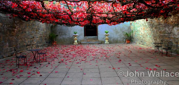 Winery Courtyard