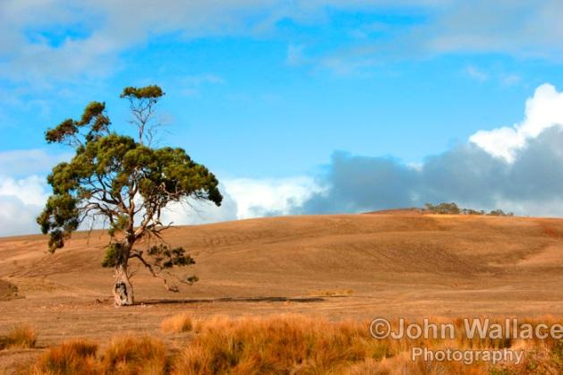 Sunburnt country, South Australia