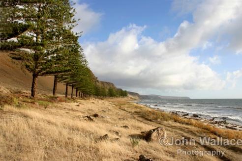 Lady Bay, South Australia