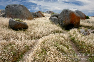 Granite Island, South Australia