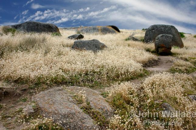 Granite Island , South Australia