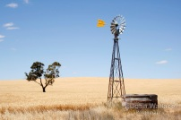 Wind driven water pump