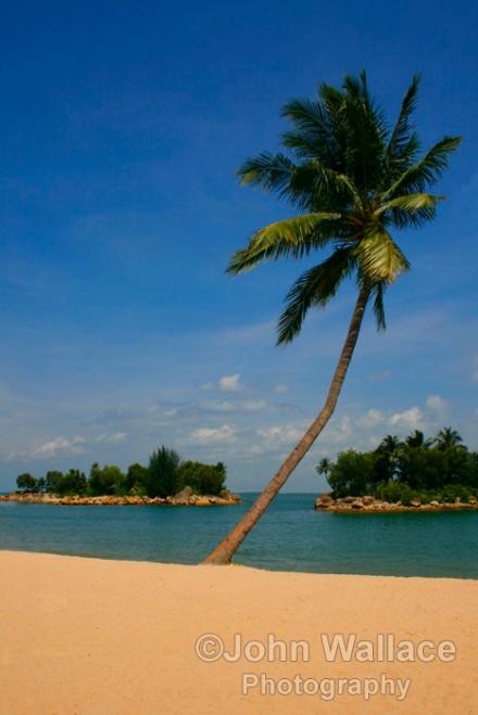 A Palm Beach Singapore