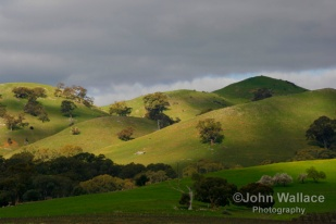 Barossa Hills