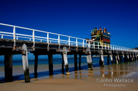 Horse drawn carriage at Victor Harbour