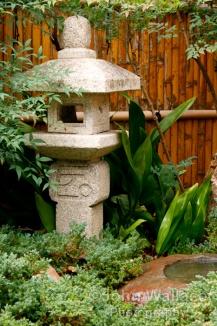 Japanese Garden Display