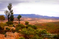 Flinders Ranges South Australia