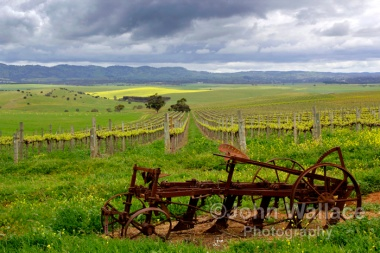 Storm in the Barossa