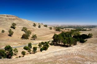 Sunburnt hills in Summer
