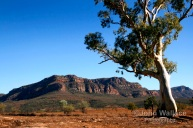Australian Outback of the Flinders Ranges