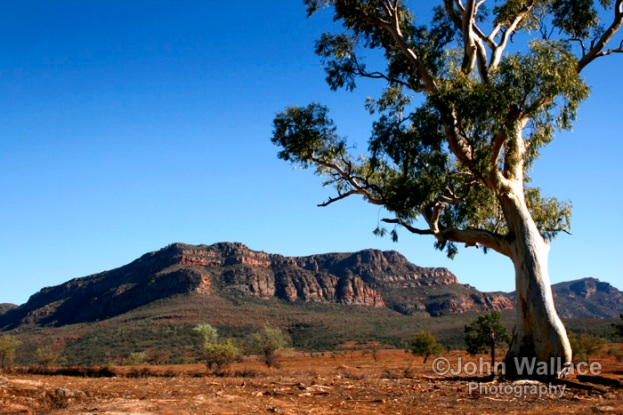 Australian Outback of the Flinders Ranges