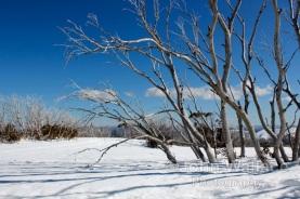 Winter in the mountains of Victoria Australia