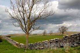 Pennine Rural Landscape