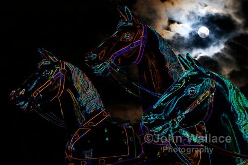 Spirit Horses Ride