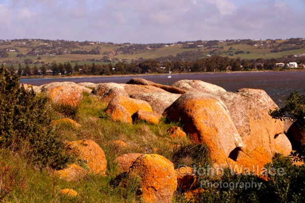 Lichen covered granite rock formations on Granite Island at Victor Harbor, South Australia