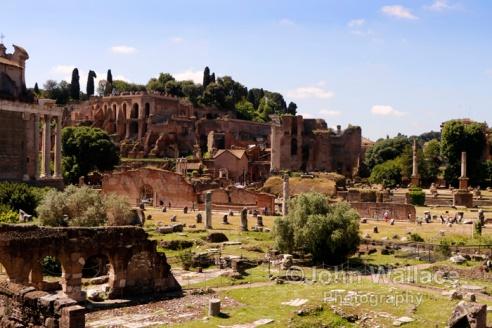 The Palatine viewed across the Roman Forum (Rome)