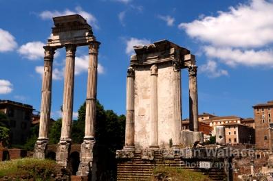 The Temple of Vesta (Rome)
