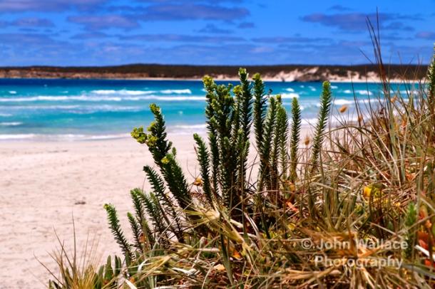 A quiet beach on Kangaroo Island, South Australia