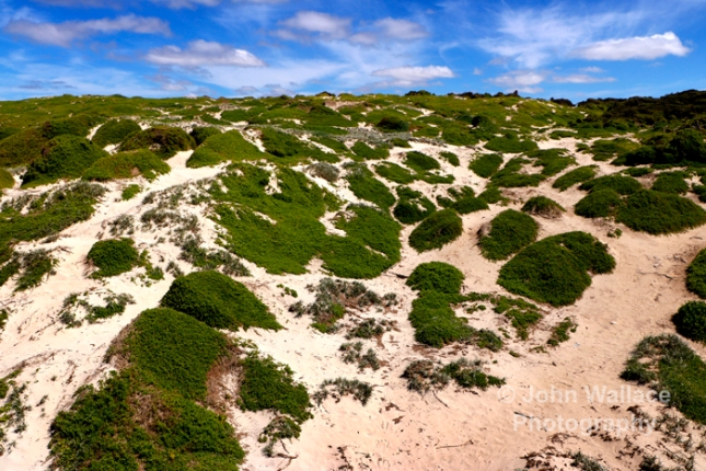 Sand dunes on the beach on Kangaroo Island, South Australia