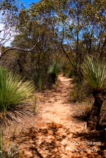 Bushland hiking trail on Kangaroo Island, South Australia