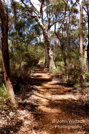 Bushland walking trail on Kangaroo Island, South Australia