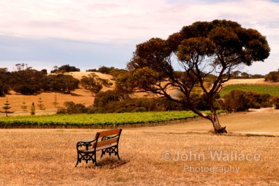 A seat with a view overlooking the Bay of Shoals on Kangaroo Island South Australia