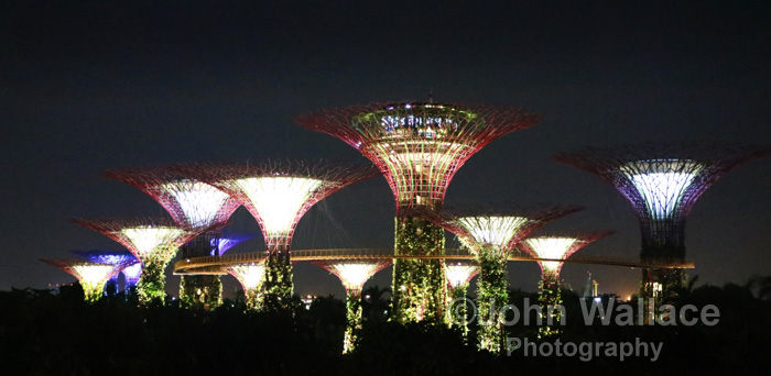 Night lights in the Gardens by the Bay in Singapore