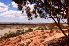 River Murray viewpoint in the riverland of South Australia